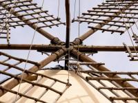 windmill montessori school mallorca